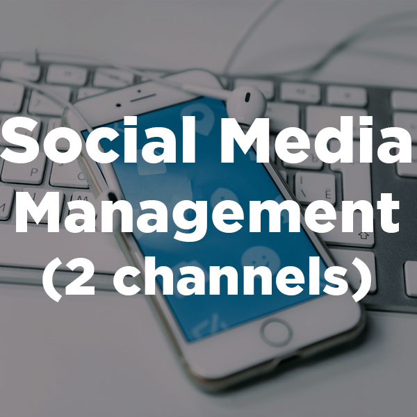 Social Media Management (2 channels)