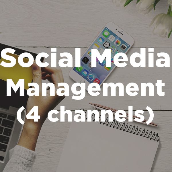 Social Media Management 4 channels.