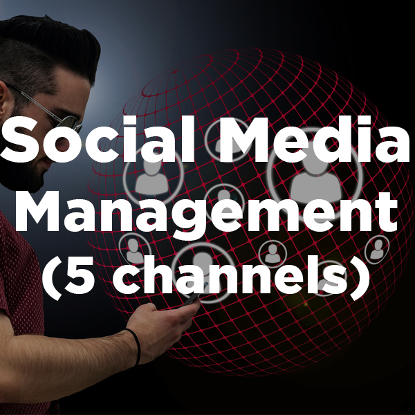 Social Media Management (5 channels)