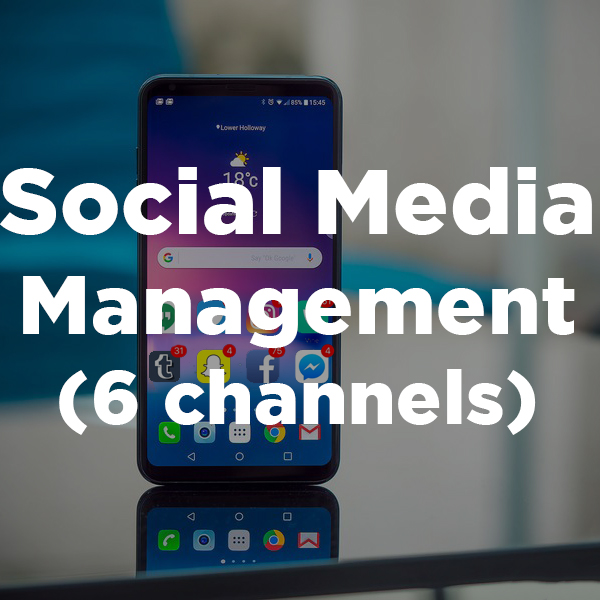 Social Media Management (6 channels)